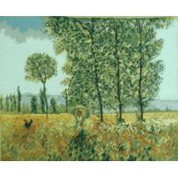 1031 TT Felder im Frühling